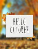 Hello October autumn text on white plate board banner fall leav. Es blur background stock photography