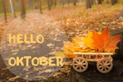 Hello October greeting card. Autumn maple leaves background stock images