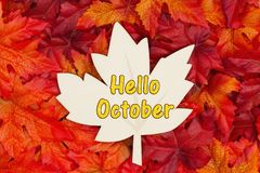 Hello October text on wood maple leaf  with fall leaves for the fall season. Hello October message, Some fall leaves and a wood maple leaf with text Hello royalty free stock photo