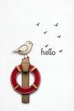 Hello sea gull. Stock Photo