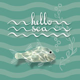 Hello Sea. Handwritten lettering and fish. Hello Sea. Greeting card poster. Calligraphy black text word. Handwritten lettering and fish with flecks of sunlight Stock Photography