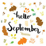 Hello September hand drawn lettering card. Hello September hand drawn lettering with leaves and flowers Stock Photo