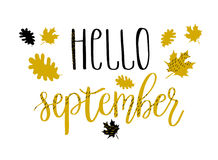 Hello september lettering text with autumn leaves and acorns. Hand drawn  illustration. Black, white and golden background with text on it. Autumn poster Stock Images
