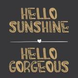 Hello solsken, Hello ursnyggt citationstecken royaltyfri illustrationer