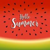Hello sommarbakgrund med illustrationen för vektor för hälsningsommarbokstäver vektor illustrationer