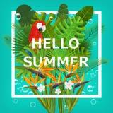 Hello sommarbakgrund med tropiska växter och blommor För typografisk baner, affisch, partiinbjudan vektor Royaltyfri Bild