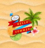 Hello sommarbaner med blomman, kokosnötcoctailen, palmträdsidor, skivor av apelsinen och limefrukt Arkivfoton