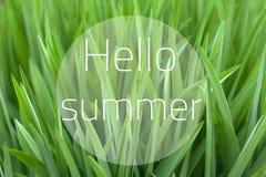 Hello sommarcollage Härlig naturlig bakgrund för grönt gräs royaltyfri fotografi