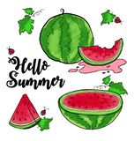 Hello sommarvattenmelon stock illustrationer