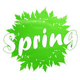 Hello Spring abstract background. Design element with green leaves Royalty Free Stock Images