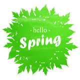Hello Spring abstract background. Design element with green leaves Stock Photography
