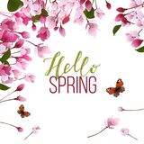 Hello spring background. Spring background with blooming branch, pink flowers and buds. Vector illustration Stock Image