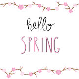 Hello Spring Background with cherry blossom flowers.Illustration Stock Photos
