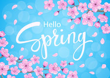 Hello spring background with cherry blossoms flowers branches Stock Images