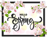 Hello spring background with cherry blossoms, leaves and branches.Greeting card with hand drawn lettering. Vector Royalty Free Stock Photo