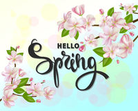 Hello spring background with cherry blossoms, leaves and branches.Greeting card with hand drawn lettering. Vector Royalty Free Stock Photos