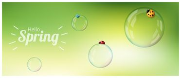 Hello Spring background with colorful ladybugs on soap bubbles. Vector , illustration Royalty Free Stock Photography