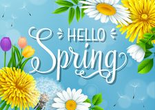 Hello Spring background with different flowers on blue sky background. Illustration of Hello Spring background with different flowers on blue sky background Stock Photo