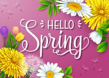 Hello Spring background with different flowers on purple background. Illustration of Hello Spring background with different flowers on purple background Stock Photography