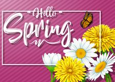 Hello Spring background with flower and butterfly on purple striped and background. Illustration of Hello Spring background with flower and butterfly on purple Stock Images