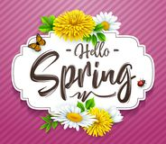 Hello Spring background with flower, ladybug, and butterfly on striped purple background. Illustration of Hello Spring background with flower, ladybug, and Stock Photography