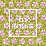 Hello spring background with flowers. Floral texture Royalty Free Stock Image