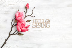 Hello spring background with flowers Stock Image