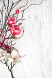 Hello spring background with flowers. Spring background with nice flowers on white wooden subsoil Royalty Free Stock Image