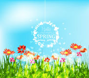 Hello spring background with sunflowers greeting Stock Photo