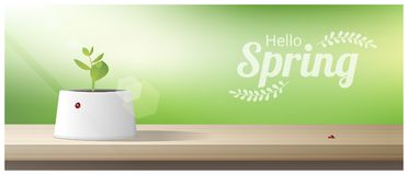 Hello Spring background with young sprout growing in a pot on wooden table top. Vector , illustration Royalty Free Stock Photo
