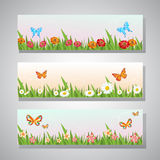 Hello spring banner. 3 banner set with different butterfly, grass, and flower in spring time Stock Images