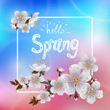 Hello spring. Beautiful spring background with branch of blossoming apricot and the words `Hello Spring royalty free illustration