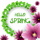 Hello spring border lillac flower orchid Stock Photography