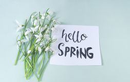 Hello spring calligraphy note decorated with snowdrops on light. Green background stock photo