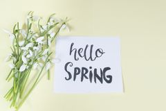 Hello spring calligraphy note decorated with snowdrops on light. Yellow background royalty free stock photo