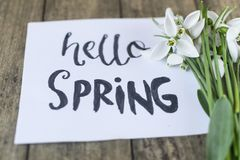 Hello spring calligraphy note decorated with snowdrops on wooden. Background royalty free stock images