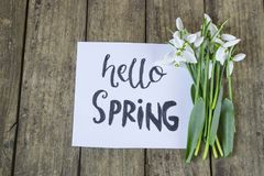 Hello spring calligraphy note decorated with snowdrops on wooden. Background royalty free stock photo