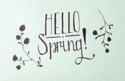 Hello spring calligraphy note. Hello spring handwritten calligraphy note photograph royalty free stock photos