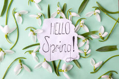 Hello spring calligraphy note with snowdrops. Hello spring calligraphy note decorated with snowdrops royalty free stock photos