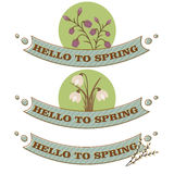 Hello spring card,  illustration Stock Image
