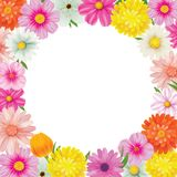 Hello spring circle frame greeting card and flowers decoration. Hello spring circle frame greeting card and flowers decoration Royalty Free Stock Photo