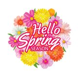 Hello spring circle frame greeting card and flowers decoration. Royalty Free Stock Photo