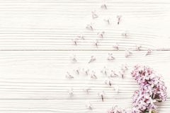 Hello spring flat lay image. beautiful lilac flowers on rustic w Royalty Free Stock Photos