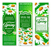 Hello Spring floral banner set with daisy flowers. Hello Spring floral banner set. Figured frame, decorated by blooming daisy flowers with text layout in center Royalty Free Stock Photos