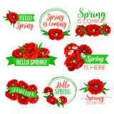 Hello Spring floral symbol set with flower bouquet Stock Image