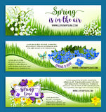Hello Spring flowers wreath vector banners set. Hello Spring banners for springtime holidays. Vector Spring in Air greeting design of flowers bunches or wreath Royalty Free Stock Images