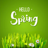 Hello Spring with grass stock illustration