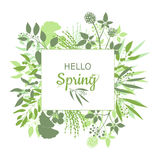 Hello Spring green card design with text in square floral frame. Vector illustration. Lettering design element Stock Photography