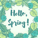 Hello Spring greeting in a speech bubble of fresh new young gree Royalty Free Stock Image
