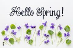 Hello Spring greetings Stock Photo